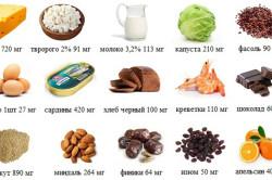 Продукты богатые кальцием и минералами для здоровья и укрепления костей.