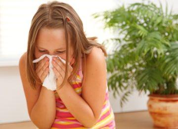 Виды аллергического ринита и его лечение народными средствами