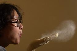 Пыль - причина ринита