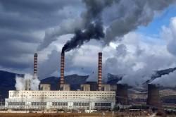 Загрязненность окружающей среды - причина аутоиммунных заболеваний