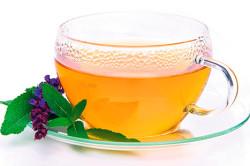 Чай из шалфея при простудных заболеваниях