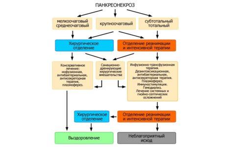 Алгоритм лечения панкреонекроза