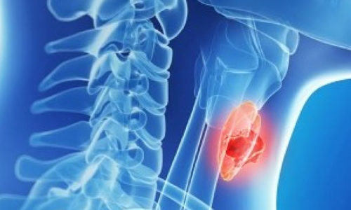 Нарушение функций щитовидной железы - симптом кретинизма