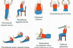 Упражнения для лечения спины