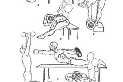 Упражнения для спины на скамье